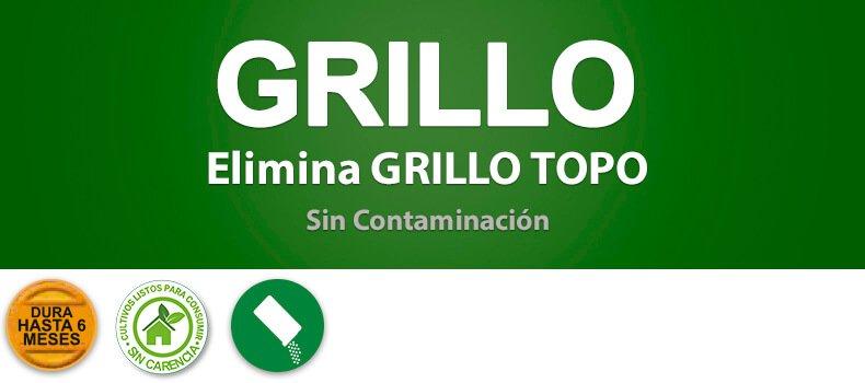 Mamboretá GRILLO - Productos (encabezado)